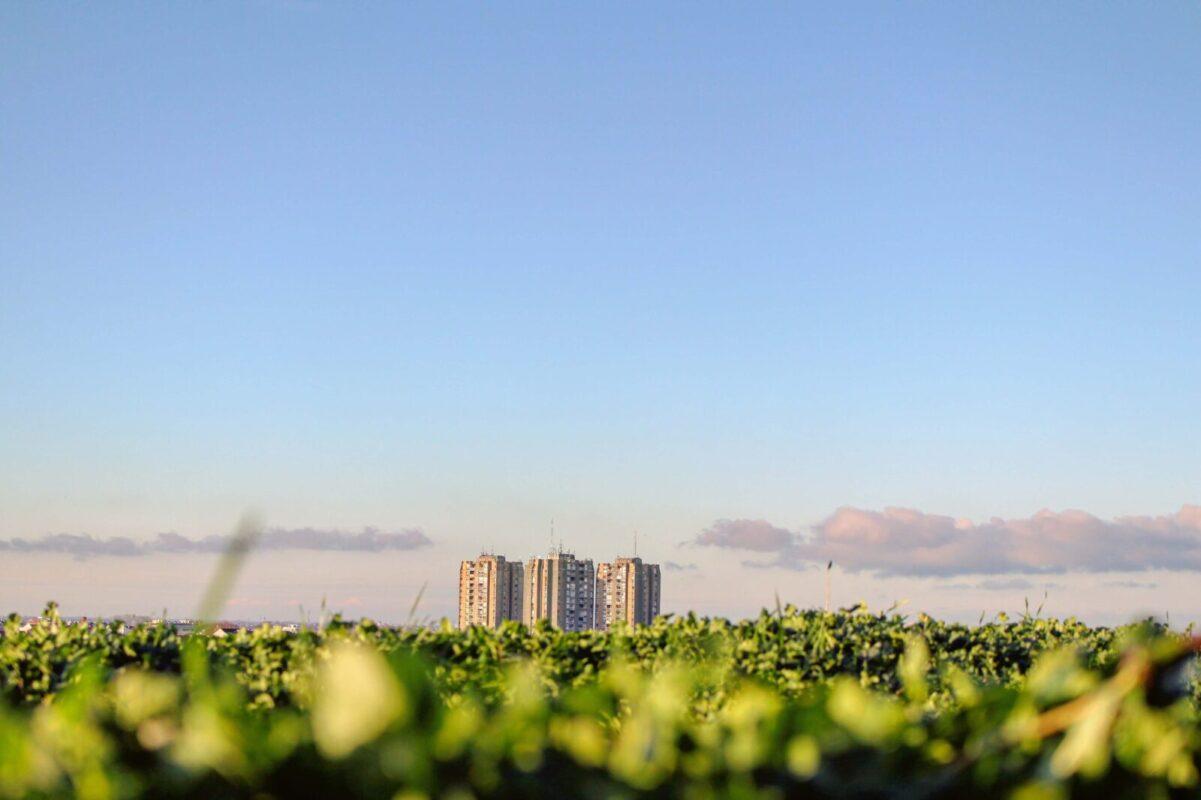 持続可能な社会 イメージ写真